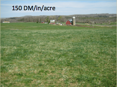 150 lbs DM:Acre