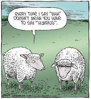 SheepBahHumbug