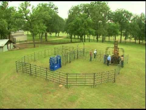 Build A Bud Box To Make Livestock Handling A Breeze On