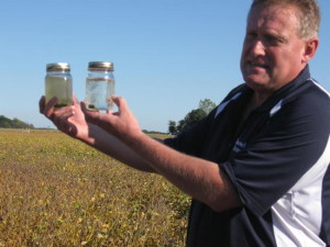 Jeff Rasawehr, SARE grant recipient, shows runoff of cover cropped land versus non-cover cropped land. Rasawehr grows corn, soybeans and wheat and beef on 2,000 acres, and employs cover crops and no-till.