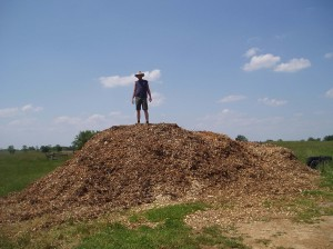 Standing on a huge pile of wood chips.  Risk Level:  Minimum