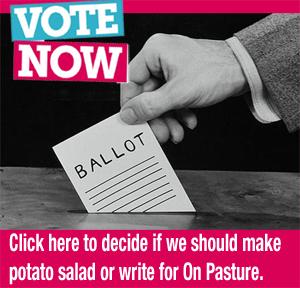 PotatoSaladVote