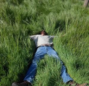 My own equation:  Farmer + Grass = Happy