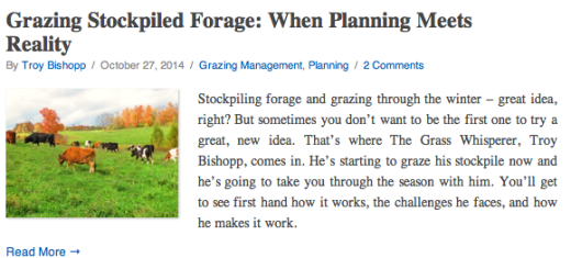 Grazing Stockpiled Forage