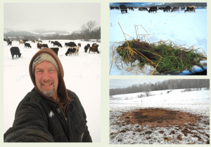 Troy Bishopp Winter Grazing 2