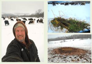 Troy Bishopp Winter Grazing 2