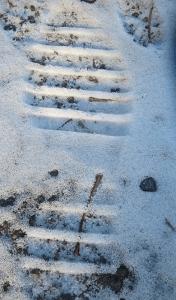 Troy's foot print