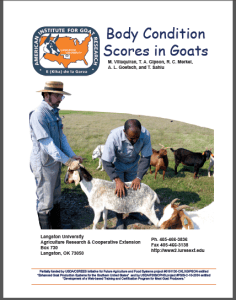 Goat Body Condition Score Cover