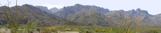 CatalinaPanorama