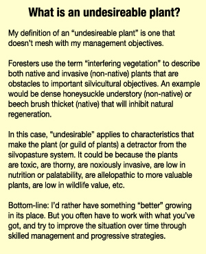 What Is an Undesireable Plant?