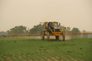 1920px-1264_Rogator_Spraying_Corn