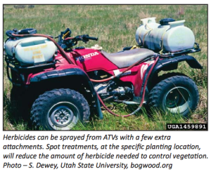Herbicide treatments for prepping for trees in pasture