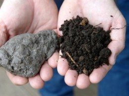 Unhealthy and health soil from the same site. Photo courtesy of the dirtdoctor.com