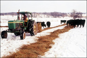 Photo courtesy of University of Missouri Extension
