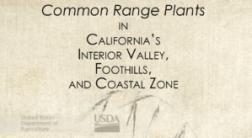 CA Range plants guide