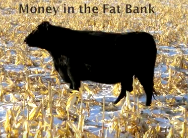 Money in Fat Back Sand Ranch