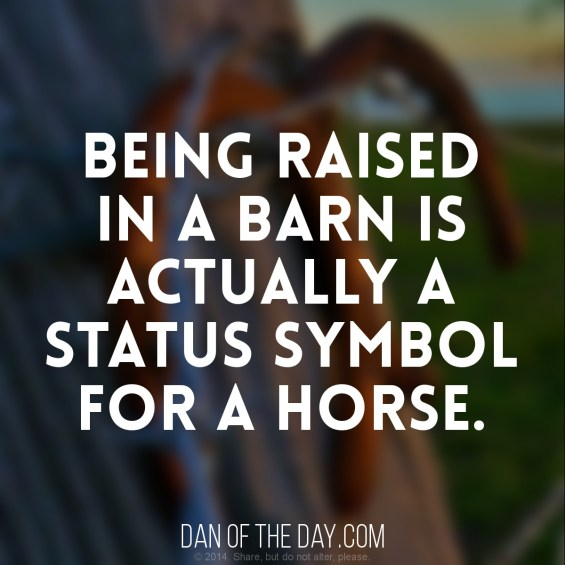 raised-in-a-barn
