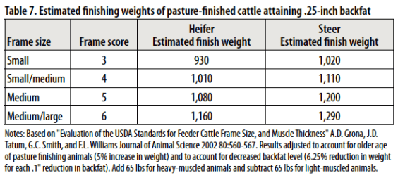 Is Your Beef Finished? Use Frame and Body Condition Score to Find ...