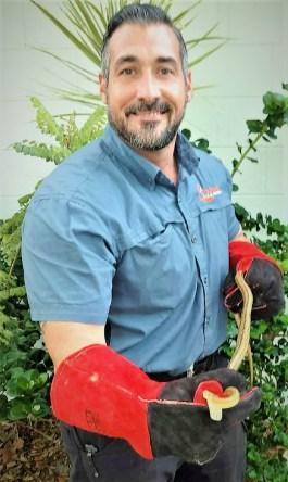 Rat snake removal