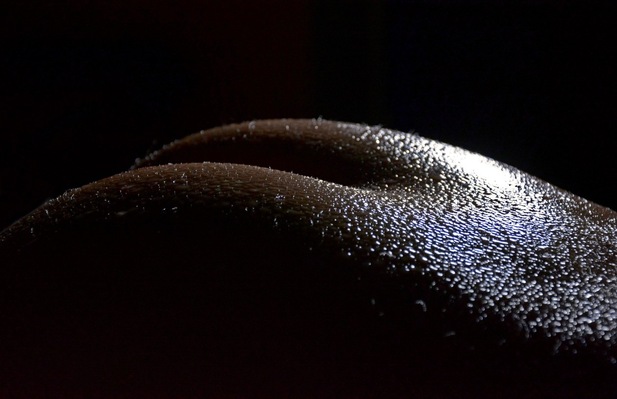 A butt with light shining on it in a sensual way. Photo.