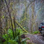 gold-wing-adventure-onroad-5