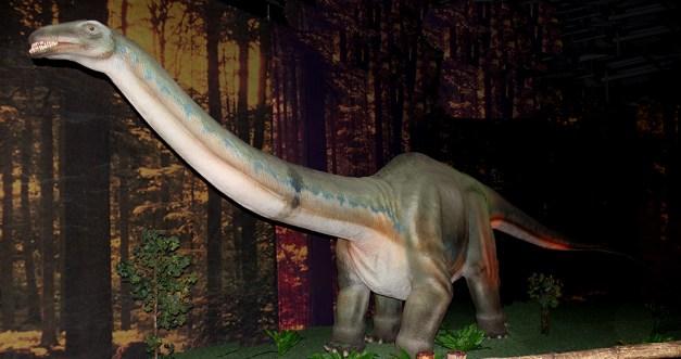 2014-07-05 Dinosaures 043