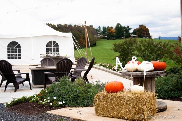 Fall_Wedding_On_Sunny_Slope_Farm-16
