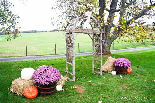 Fall_Wedding_On_Sunny_Slope_Farm-8