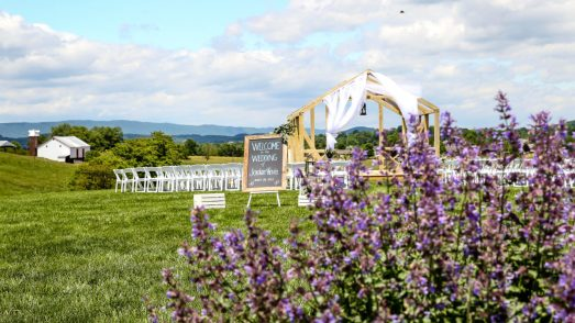 Jordan + Kevin Wedding On Sunny Slope Farm Wedding Venue by Linda Hexter Photography (3 of 30)