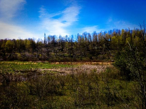 Maitland Trail
