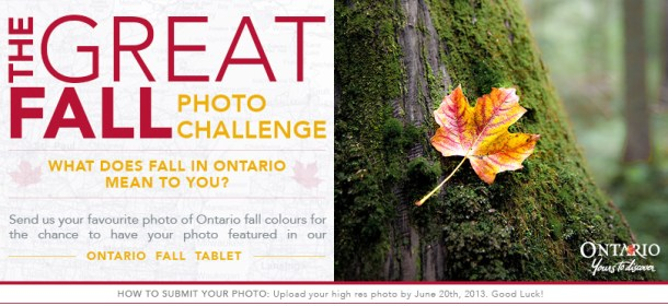 The Great Fall Photo Challenge
