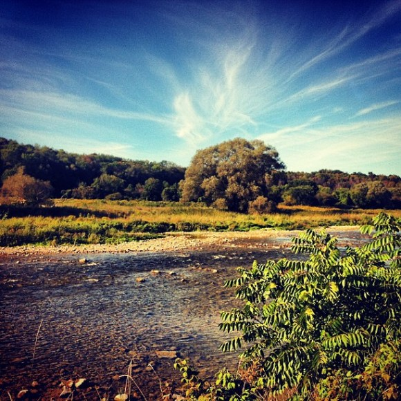 traveldivajenna lower maitland river