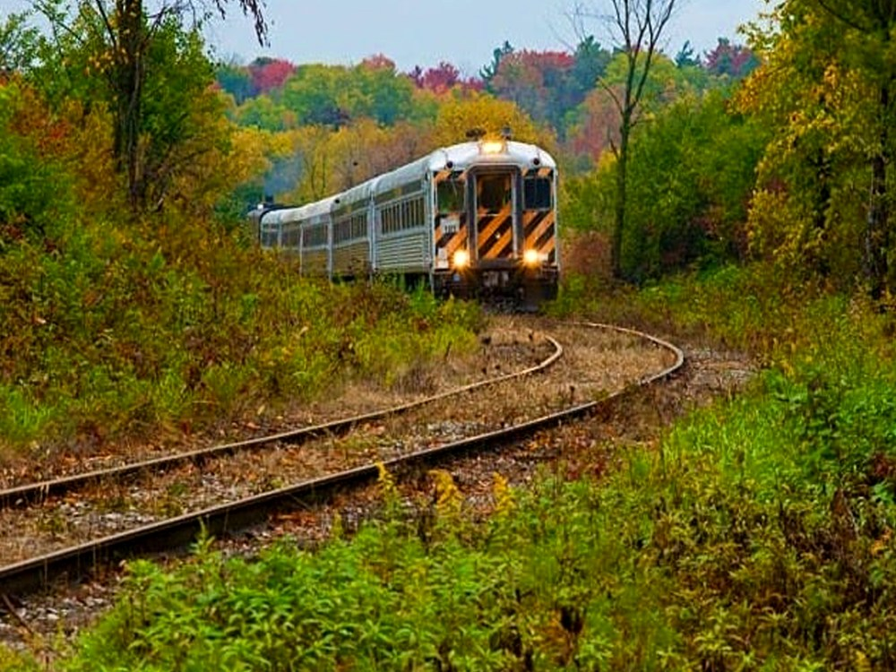 Railway tracks leading through fall foliage