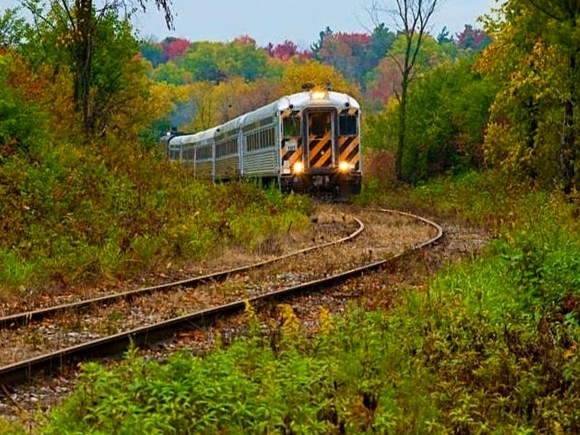 Railway tracks leading through fall foliage