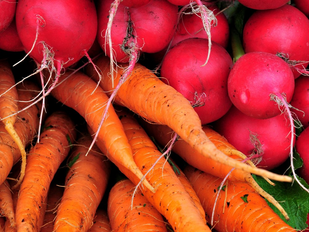 Close up photo of beets and carrots
