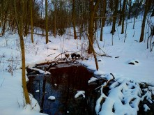 A small ground source of a tributary in the valley.