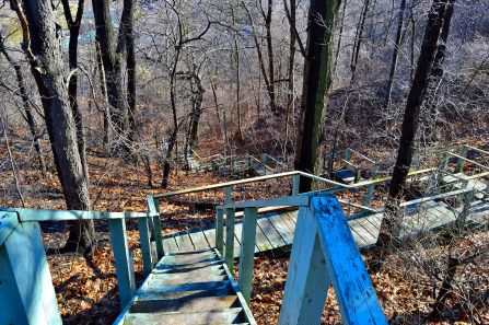 The stairs down into the valley at Crother's Woods and the Water treatment plant.