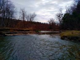 Looking down the creek.