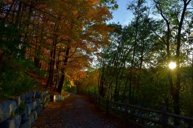Fall trails.