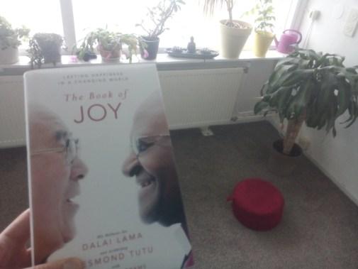 Ik houdt The Book of Joy vast