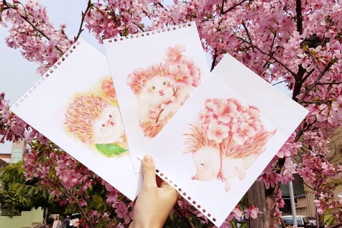 櫻花刺蝟。新竹色鉛筆。初階班課程