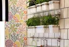 ديكور المطبخ من الأمور المهمة لإضفاء لمسة ناعمة وطبيعية وخاصة مع النباتات الخضراء