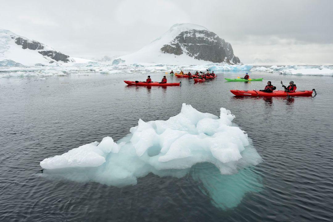 un grupo de turistas haciendo kayak en la isla de Cuverville, Antártida. Foto cortesía de la agencia de viajes Hurtigruten
