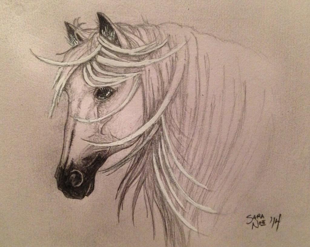 Winter Stallion pencil artwork horse Sara A. Noe
