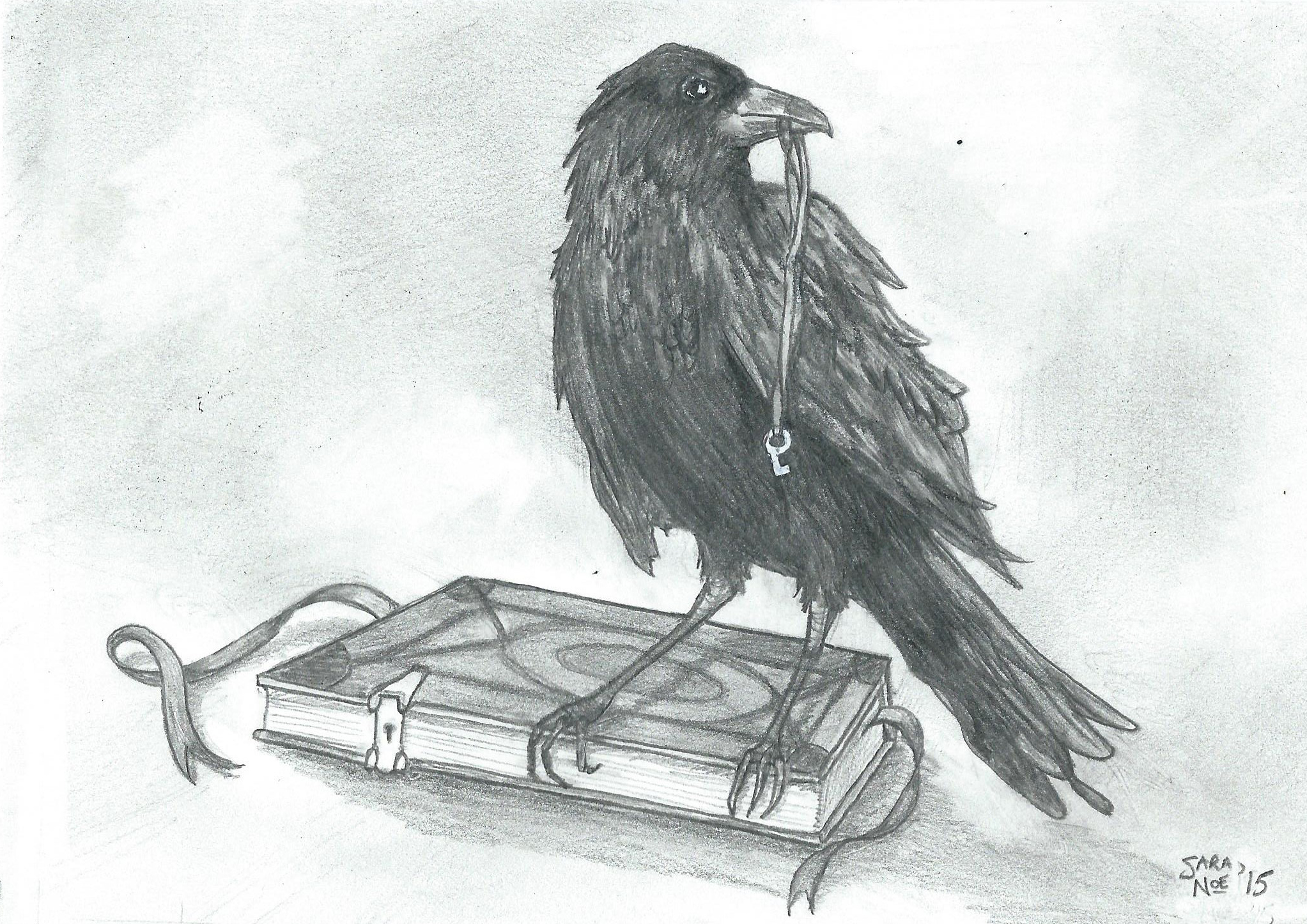 pencil artwork raven book Sara A. Noe