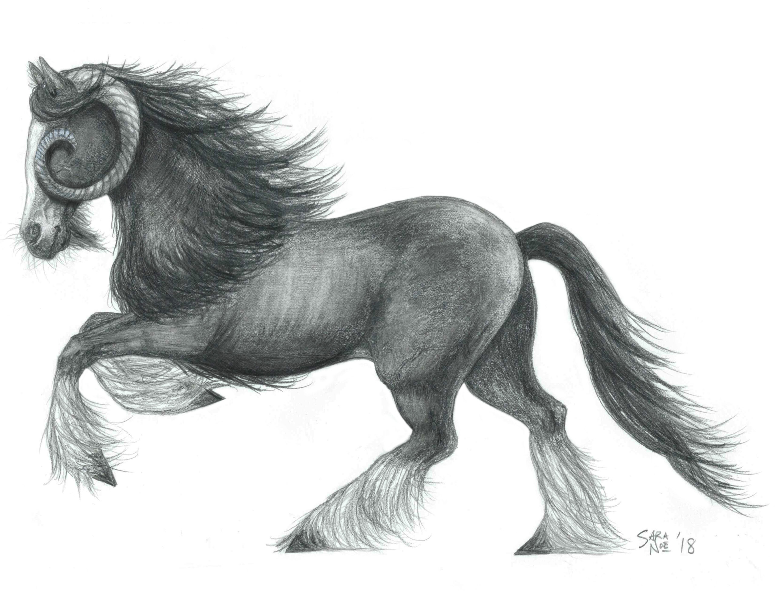 Mystical horse bilocorn pencil sketch by Sara A. Noe