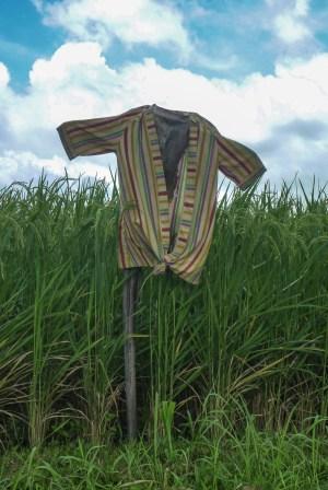 Bali Rice Walk-3