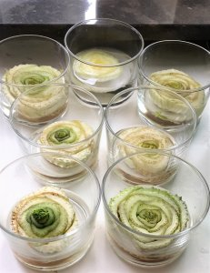 Celery base growing in glass