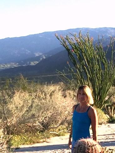 desert garden vista (2)