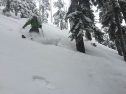 Yodelin Tree Skiing (photo cred: Dave Collins)